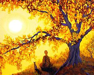cat-monk-sun2