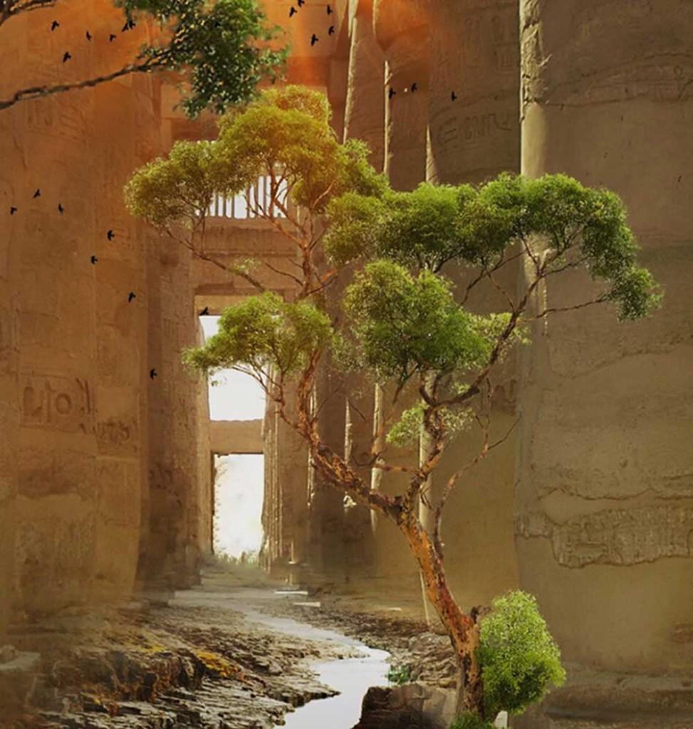 desert-door